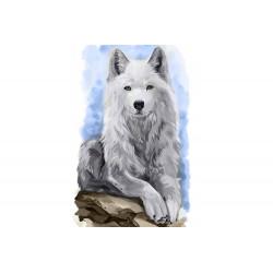 Kit Diamond painting Vagabon gris