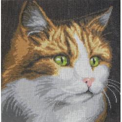 Canevas imprimé Tête de chat