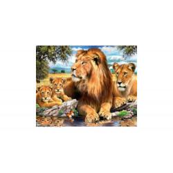 Diamond Painting Lions